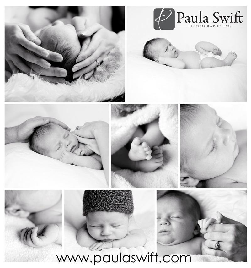 newborn-photographer-ma