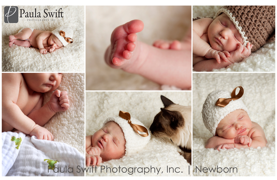 framingham-newborn-photographer