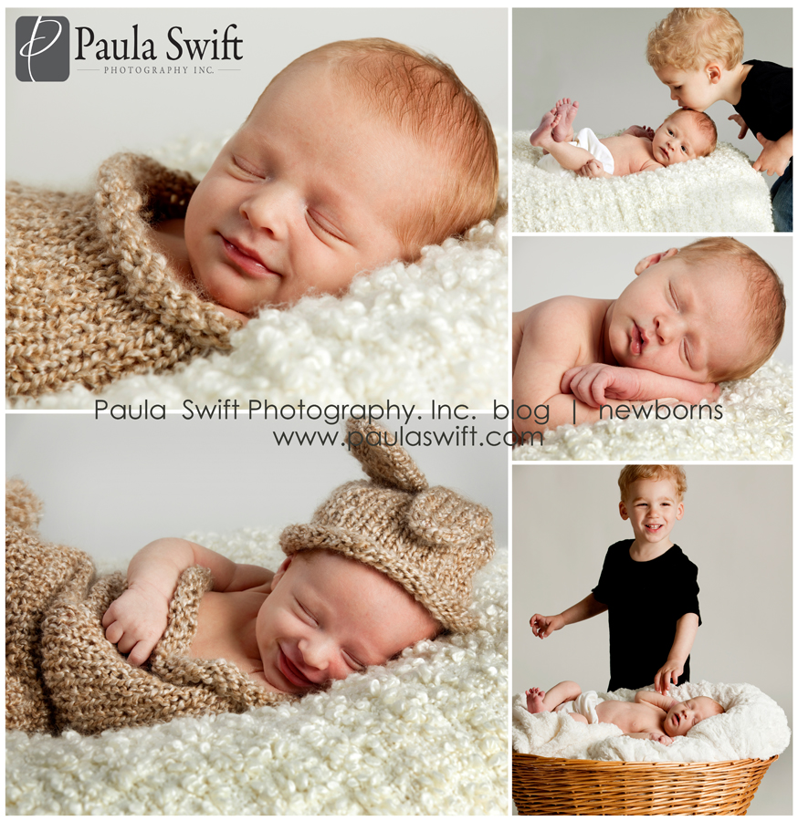 Shresbury Newborn Photographer