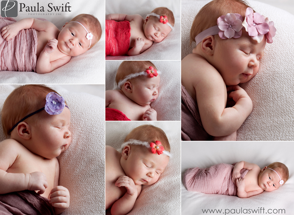 Best Newborn Photographer Boston