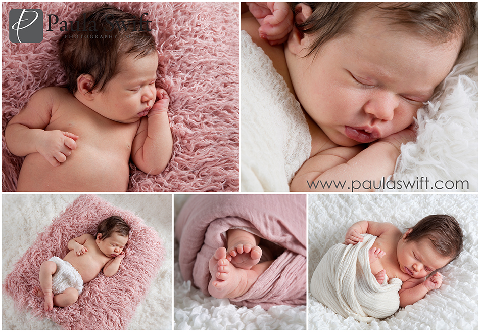ramingham newborn photographer