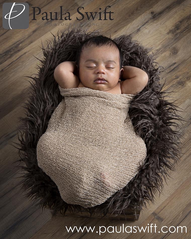 Wayland Newborn Photographer