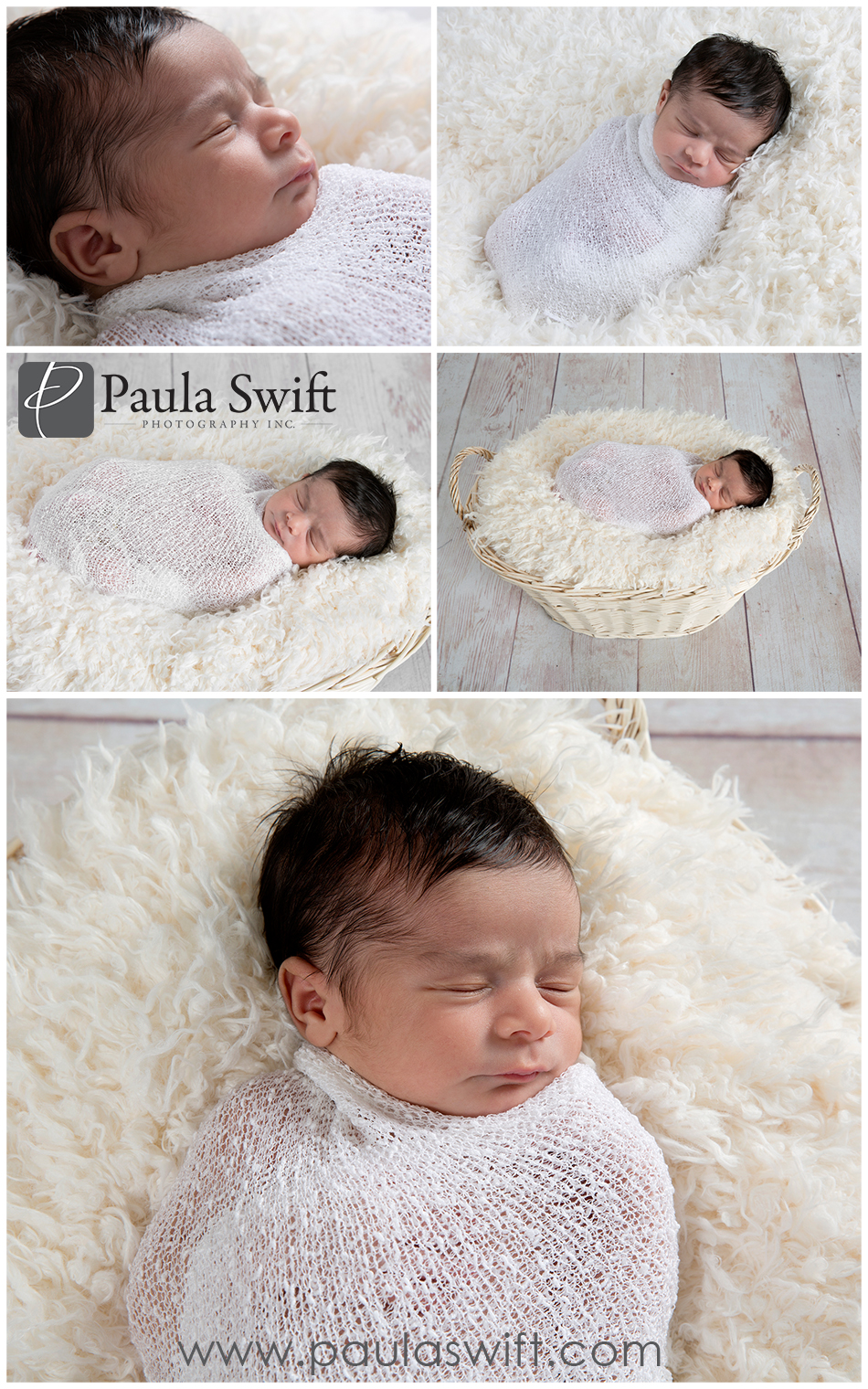 Boston Best Newborn Photographer
