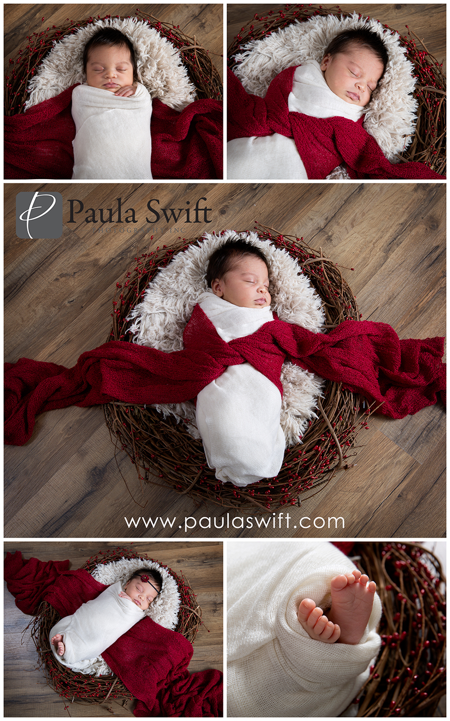 boston newborn photographer
