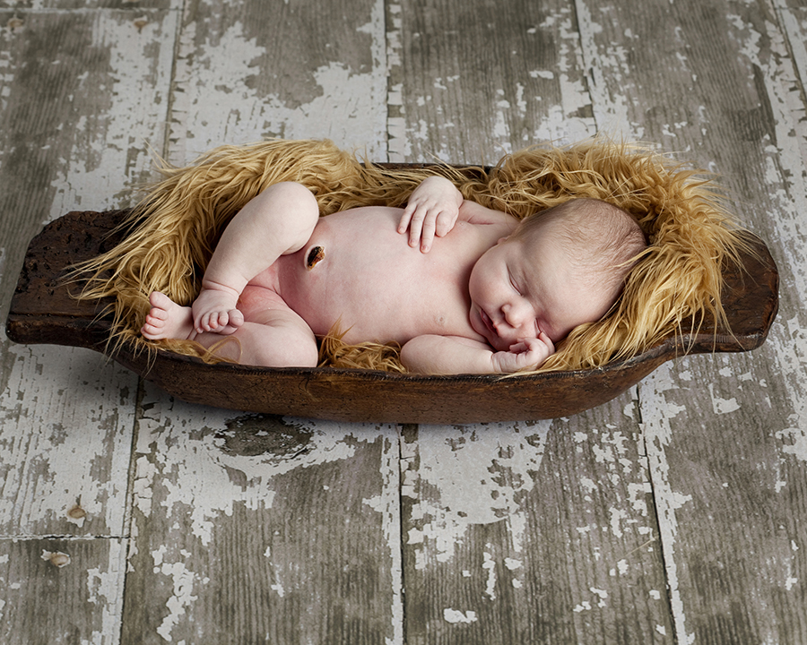 boston_newborn_photographer_0051