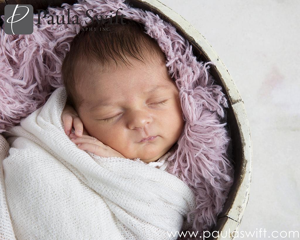 newborn photographer sudbury
