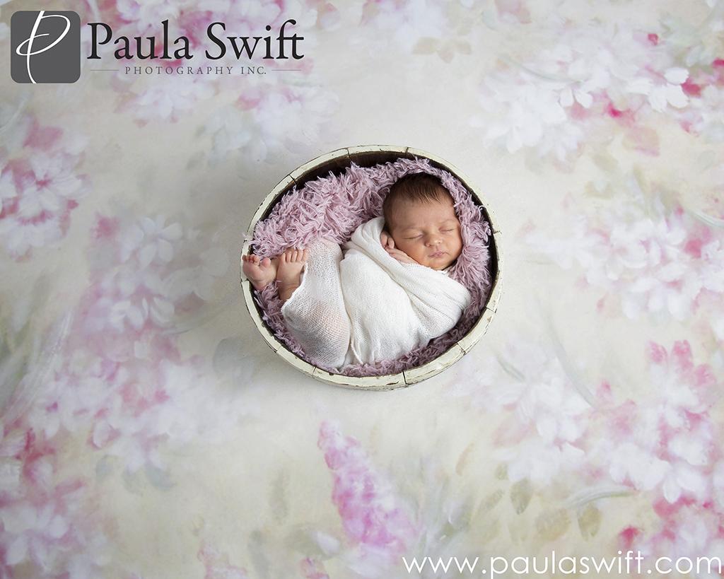newborn photographer framimgham